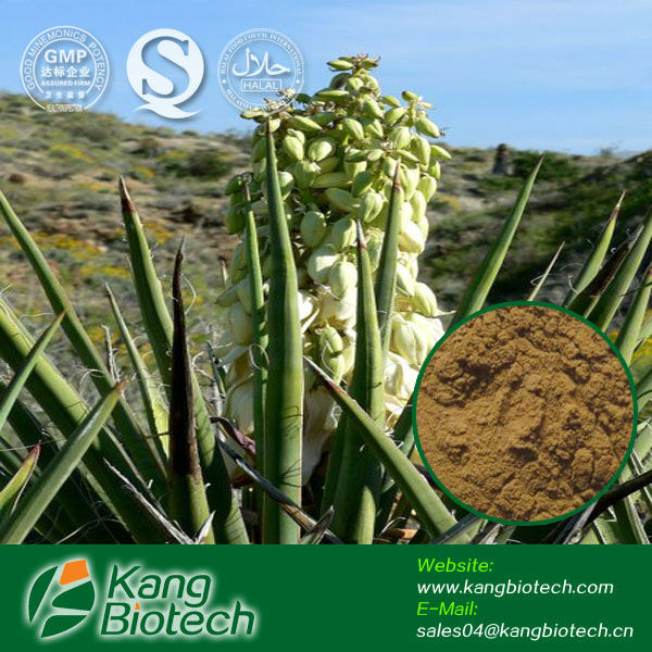 High quality Pure Yucca Extract Liquid,feed ingredient