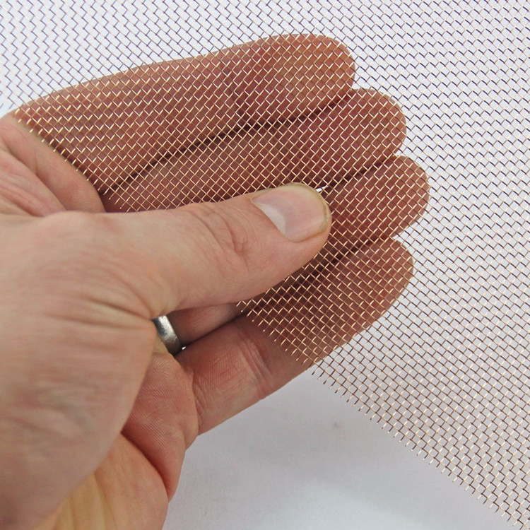 Copper wire mesh Phosphor bronze wire mesh screen for chinaware printing