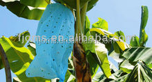 HDPE banana pesticide bags with holes