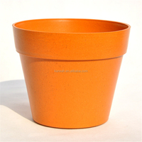 Biodegradable Planting Pot