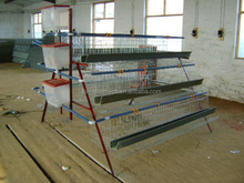 Chicken layer cages/poultry farm house design/egg chicken cage