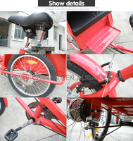 v roller/ rickshaw for passenger manpower scooter in tricycle made in china/ clamber brand 8001