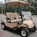 China factory price wholesale 2 seat 250CC gas powered golf cart with beige body