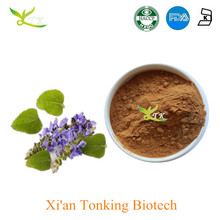 Natural Coleus Forskohlii Root Extract 10% Forskolin