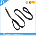 Customized dog leash retractable