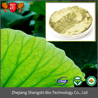 High quality Lotus extract, lotus root powder, fresh lotus leaf powder