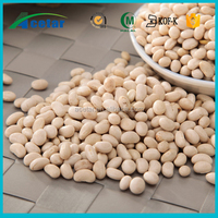 Natural product kidney bean extract