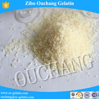 High Quality Unflavored Halal Beef Gelatin Powder