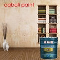 Caboli China factory directly sell strong adhesive primer coating