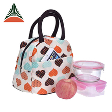 Lightweight Microfiber Travel Lunch Tote Bag For Ladies
