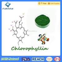 Baking green Pigment/ Healthy food Sodium Copper Chlorophyllin/Top quality with free sample Sodium Copper Chlorophyllin