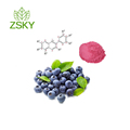 High quality Natural Blueberry Extract Powder in bulk proanthocyanidins