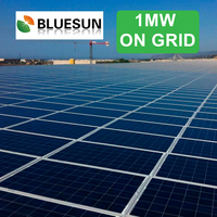 Bluesun hot selling on-grid 1mw solar system and solar power plant for industrial use