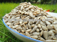 organic sunflower seeds/kernel
