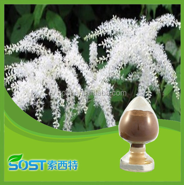 High Quality Factory Supply maca herb extract