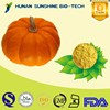 Food Grade No Artificial Flavor Product Dried Pumpkin Vegetable Powder