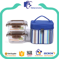Portable stripe print insulated lunch cooler bag with handle