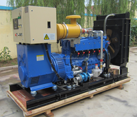 100kw CE&ISO certificated high quality LPG gas genset