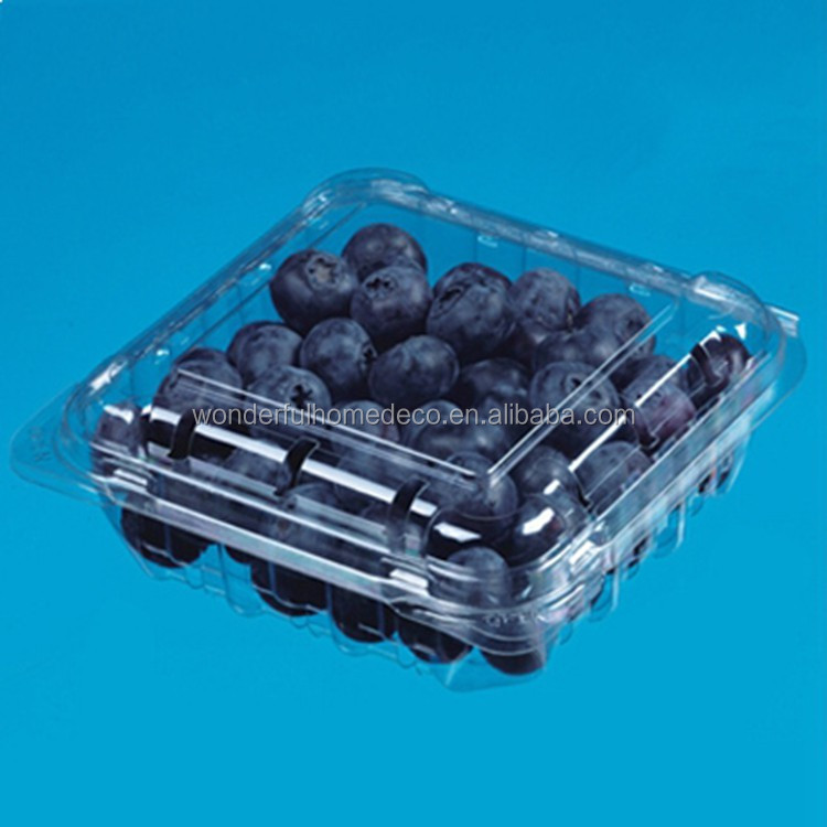 125g blueberry container for packaging / Customized plastic fruit container