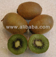 Just harvested Fresh Kiwi Fruit