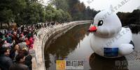 Inflatable Model Type Giant Inflatable Promotion Seagull