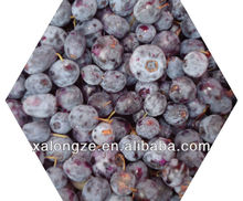 Bilberry D3G Anthocyanins 25% C3G /Bilberry extract