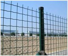 1x1 pvc coated welded wire mesh/1/4 inch pvc coated pvc coated holland welded wire mesh fence