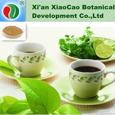 high quality Tea Saponin extract /industrial Tea Saponin powder /feeding stuff Tea Saponin