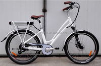 LCD displayer best seller cheap city electric bike with CE