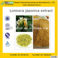 Lonicera Japonica Extract Honey Suckle Flower Extract Powder Chlorogenic acid 20% HPLC