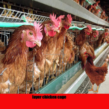 galvanized metal troughs chicken cage for sale