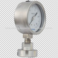 diaphragm seals manometer