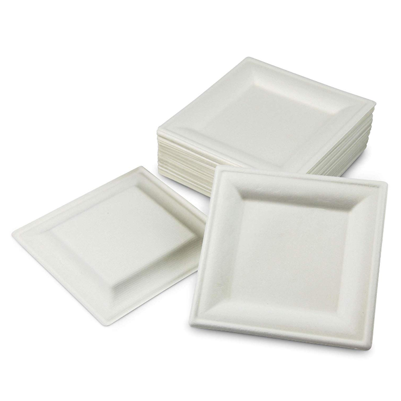 White Eco-Friendly Disposable Paper Plates Biodegradable Compostable Plates Sugarcane Plates