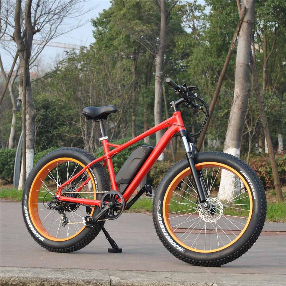 Newest Model 500W American e-cycle with bafung Hub motor