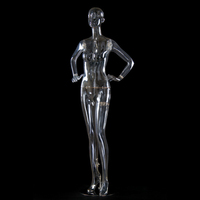 transparent male mannequin with head