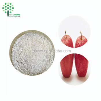 Additive free Slimming material powder organic apple cider vinegar powder 10%