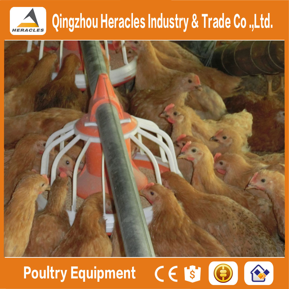 Heracles cheapest poultry house cleaning equipment material -flooring feed pan and drinking nipple