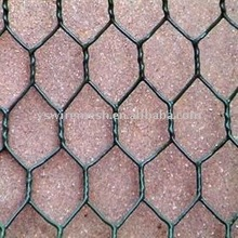 pvc coated hexagonal wire mesh/chicken house