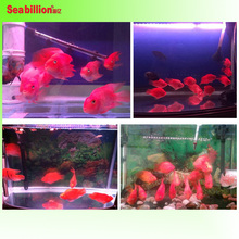High quality Arowana led light submersible aquarium light with remote control and manual