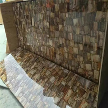 Semiprecious Stone Slabs petrified wood gemstone slabs