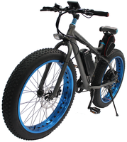 S19-2 electric bike kit 1000w Hub motor Electric bicycle Off road E bike for sale