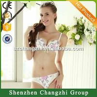 Retro cute sexy underwear bra printing gather bra set