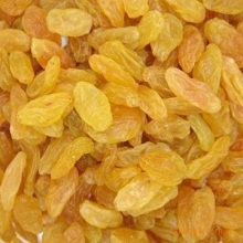 Best price Golden raisin