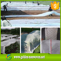 UV Stabilized 100% PP Nonwoven Fabric for Agriculture Weed Control