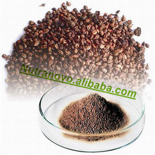 Top Quality Grape Seed Extract