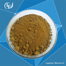 GMP Certified Factory Supply High Quality Dandelion Extract