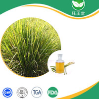hot selling high quality citronella essential oil/citronella oil/citronella oil price with best price