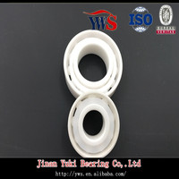 Full zro2 Ceramic Angular Contact Ball Bearing 7202