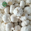 /product-detail/2018-new-crop-fresh-natural-garlic-pure-white-garlic-60767437390.html