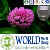 Hot sales plant extract Red clover extract/Isoflavones 8%-60%/Improve health Free sample